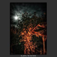 Meridiana claridad: La parra y las dos lunas