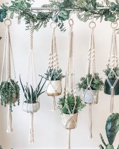 Macrame Hanging Planter, Macrame Plant Holder, Plant Holders, Hanging Plants, Hanging Flower Pots, Indoor Plants, Macrame Art, Macrame Design, Macrame Projects