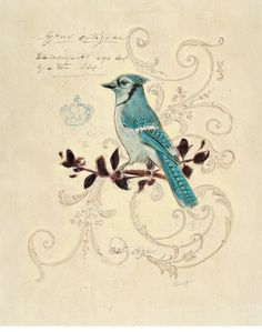 Filigree Jay Print by Chad Barrett at Art.com