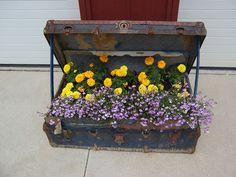 gardening in a suitcase.....Ha! I have a suitcase sitting in my flower bed for just this!
