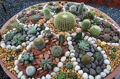 ♡Cactus mini house Garden ideias