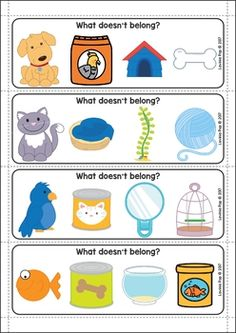 Pets Preschool and Kindergarten Centers. What doesn't belong?