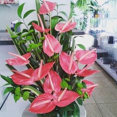 Arranjos clássico de antúrio, puro requinte e sofisticação  #gentilezageragentileza #presentes #flores #papirosflores #floresparapresente