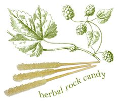 How to make herbal rock candy! Fun science project too.