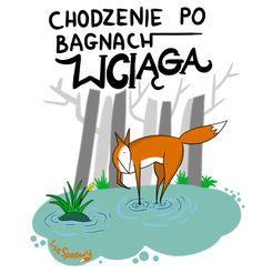 Wombat, Foxes, Author, Album, Funny, Animals, Art, Humor, Art Background