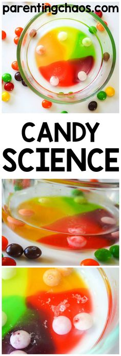 Exploring Water Stratification with Skittles Science. A fun and AFFORDABLE Science Fair Project for Kids!