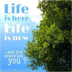 Life is Here. Life is Now. And you, where are you ? | La Vie est Ici. La Vie est Maintenant. Et vous, où êtes-vous ?