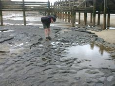Human footprints found in Britain are oldest ever seen outside of Africa. Extraordinary new evidence of Britain's first human inhabitants has been discovered in Norfolk. Around 50 footprints, made by members by an early species of prehistoric humans almost a million years ago, have been revealed by coastal erosion near the village of Happisburgh, in Norfolk, 17 miles north-east of Norwich. 1/6