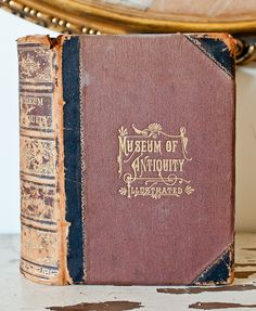 """Illustrated book on """"Museum of Antiquity"""" 1884 - Not sure where though!"""