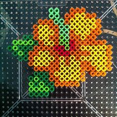 Hibiscus  flower perler beads by kraykray_kaykay