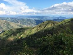 Experiencing Colombia's Coffee Region – melissathewanderer Honeymoon Trip, Banana Plants, Pablo Escobar, Green Mountain, The Incredibles, Earth, Mountains, History, Coffee