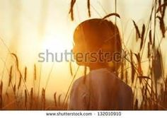 boy in wheat - Yahoo Image Search Results