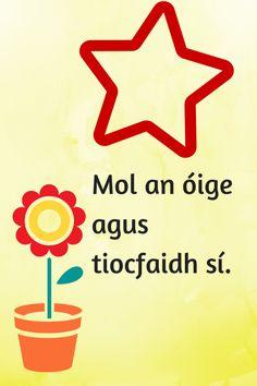 Mol an óige Irish Customs, Finnegans Wake, Gaelic Words, 6 Class, Irish Proverbs, Irish Language, Irish Culture, Real Friends, Primary School