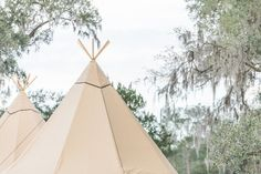 Charleston Wedding: Tipis Under the Oaks at Middleton Place Event Tent Rental, Middleton Place, Earth Tones, Celebrity Weddings, Corporate Events, Charleston, This Is Us, Photography, Outdoor