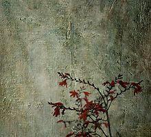 Orange Wild Flowers by Kim-maree Clark Wild Flowers, Japanese, Texture, Orange, Bedroom, Painting, Art, Surface Finish, Art Background