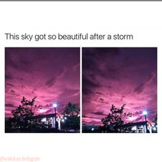 What are you talking about? This is what the sky looks like every night in Night. - about every looks night talking - NightvaleQuotes 697283954791447083 Beautiful World, Beautiful Places, Beautiful Beautiful, Photo Trop Belle, Funny Photos, Cool Photos, Amazing Photography, Nature Photography, Animal Photography