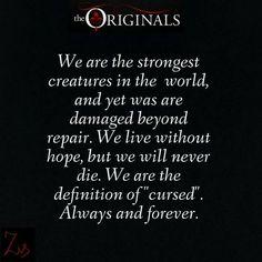 Vampire Diaries Quotes, Vampire Diaries Seasons, Vampire Diaries Wallpaper, Vampire Diaries Cast, Vampire Diaries The Originals, Tvd Quotes, Tv Show Quotes, Book Quotes, Qoutes