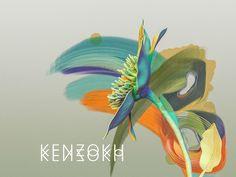 KENZOKU on Behance