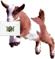 Website with holistic and natural feeding and care of goats