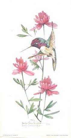 Costa's Hummingbird ~ Fine-Art Print - Hummingbird Art Prints and Posters - Bird Pictures Art Floral, Floral Watercolor, Bird Illustration, Watercolor Illustration, Hummingbird Painting, Paper Birds, Bird Pictures, Vintage Birds, Watercolor Animals