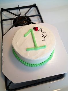 Ladybug smash cake! Cakes by Bri    www.facebook.com/briannacaughroncakes