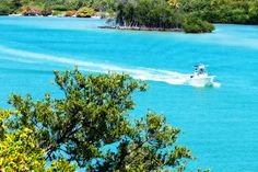 A boat cruising around the beautiful clear water in Jupiter Island.
