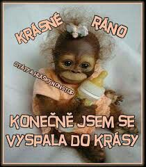 Krásné ráno Motto, Haha, Jokes, Motivation, Techno, Funny, Dresses, Good Morning, Psychology