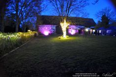 Flood lighting, fairy lights along the hedge and tree lighting at the Monks Barn Hurley for a spring Tree Lighting, Outdoor Lighting, Barn Wedding Lighting, Canopy Lights, The Monks, Paper Lanterns, After Dark, Hedges, Fairy Lights