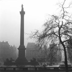 1stdibs | Wolfgang Suschitzky - London, Trafalgar Square (Statue and Tree) 1952