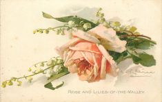 ROSE AND LILIES-OF-THE-VALLEY