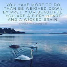 You have more to do than be weighed  down by pretty or beautiful. You are a fiery heart and a wicked brain. #quotes #beautiful #fieryheart #wickedbrain #truebeauty #lifequotes #beautifulwords #life #swans #nature #finland #pineapplewonders