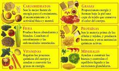 Diferencia entre alimento sano y alimentacion sana   Ejercicios con pesas
