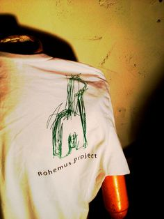 Large American Apparel  Vneck T shirt in by TheBohemusProject, $15.00