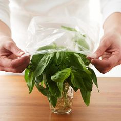 How to Chop Herbs Whether it's a spoonful or a sprinkle, herbs add personality to all sorts of dishes, from appetizers to main dishes, and even desserts. Here's how to prep and chop herbs, plus tips for using them.