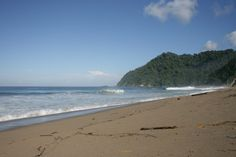 Banyuwangi Sukamade Beach is located in Meru National Park and Perhutani (national park), which is one of the Triangle Diamond in Banyuwangi, Sukamade beach is very famous because it has a very extreme Jungle track and also has views of the exotic.