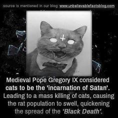 Cats black death satan