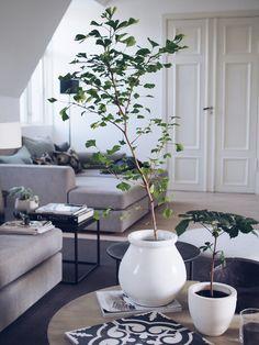 Style...Camilla Pihl // home