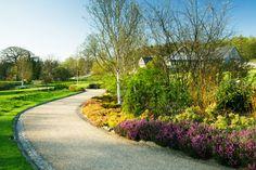 RHS Garden Harlow Carr - In spring