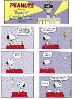 Peanuts by Charles Schulz for Nov 26, 2017 | Read Comic Strips at GoComics.com