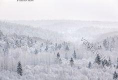 Nuuksion talvimaisemaa - luminen metsä talvi metsämaisema Nuuksio Nuuksion kansallispuisto havupuu kuura kuurainen kuuraiset kuurassa kylmyys kylmä lehtipuu lumessa lumi luonto maisema pakkanen pakkasella pakkasessa puu puusto puut talvella talvimaisema talvinen tammikuu tammikuussa vaalea valkea valkoinen valoisa