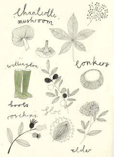 Nature illustration by Katt Frank