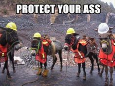 Health and Safety - PPE. Protect your ass