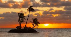 palm island 4k ultra hd wallpaper