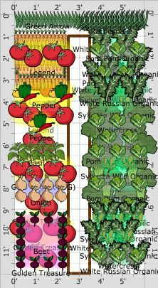 This is a great website to design your garden. You can set your location and it will show you how much space each plant needs and give you reminders.