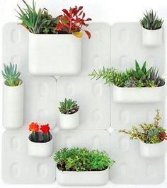 Vertical garden design by Urbio