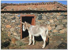 Spain, Gomera - Испания - остров Гомера.