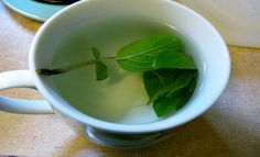 Spearmint Tea Shown To Have Positive Effect On Polycystic Ovarian Syndrome