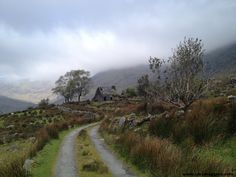 Black Valley, Ireland. I took this photo on a hike in May, 2012. Love the light!