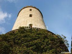 Begrünte Fassade am Aussichtsturm der alten Sparrenburg in Bielefeld im Teutoburger Wald