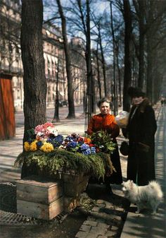 vintage everyday: Rare Color Photography of Early 1900s Paris